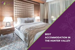 Best Accommodation in the Hunter Valley