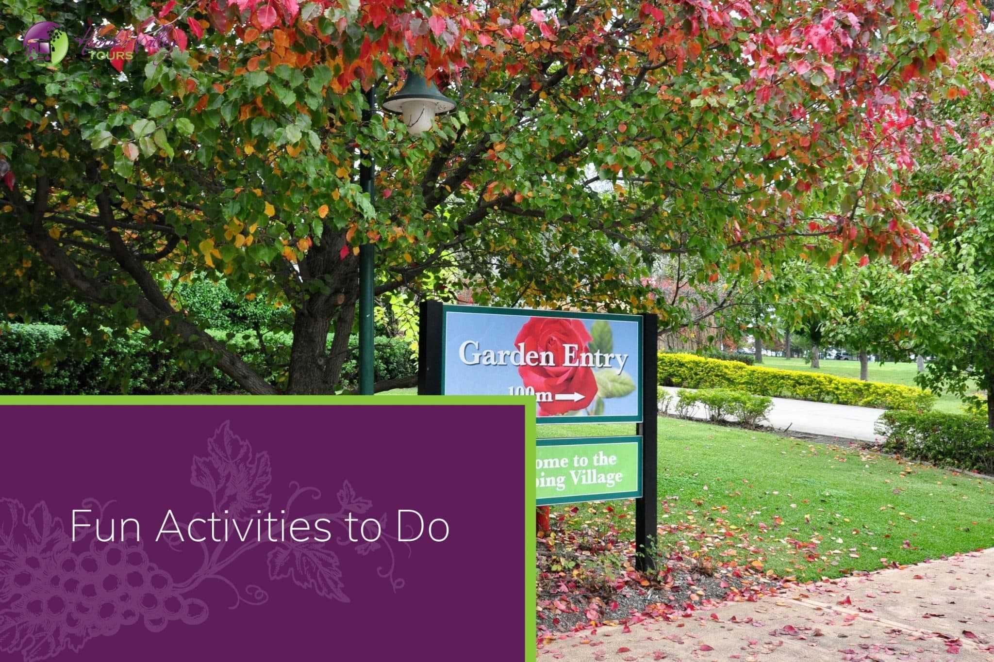 Fun Activities to Do