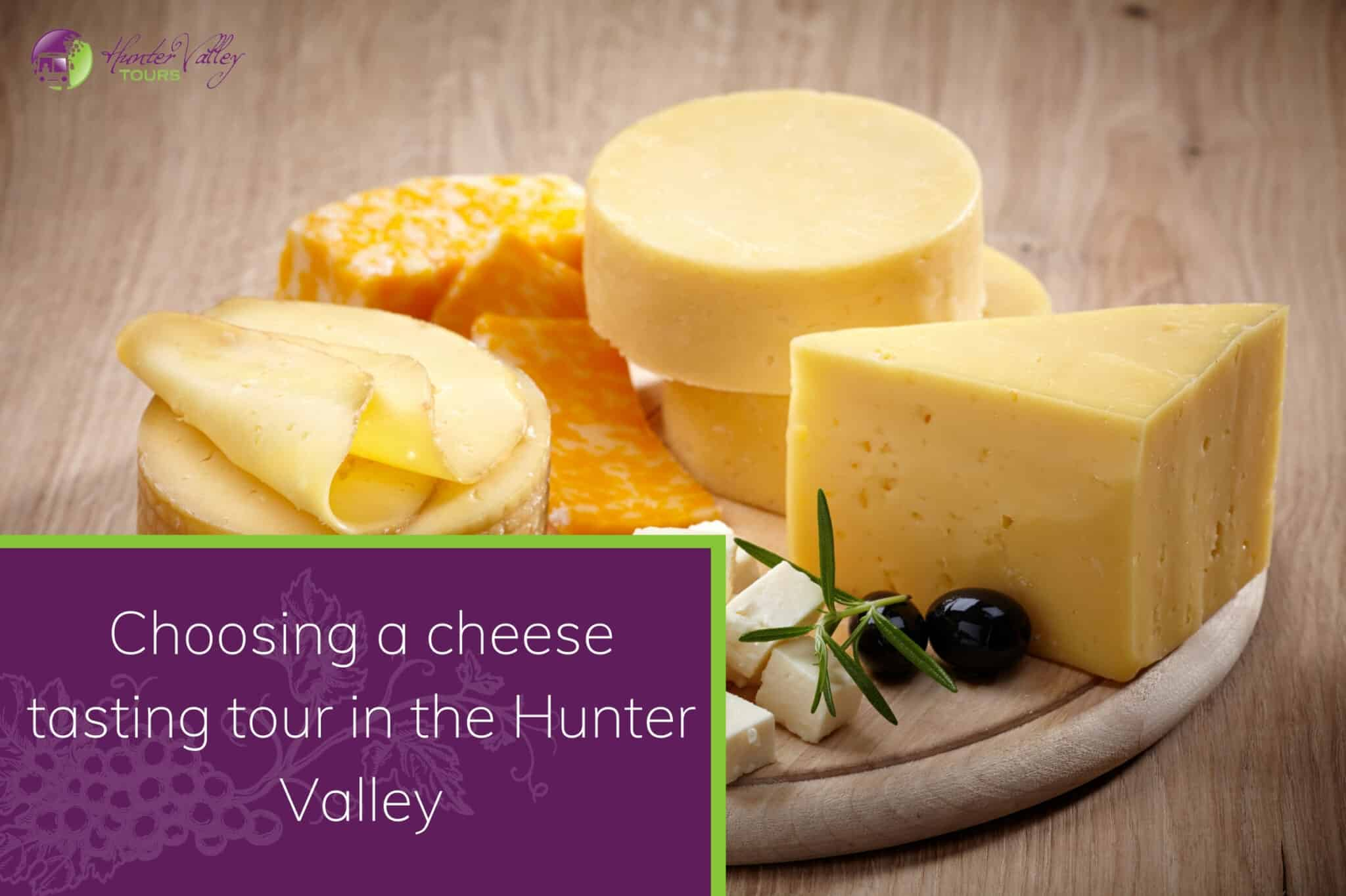 Choosing a cheese tasting tour in the Hunter Valley