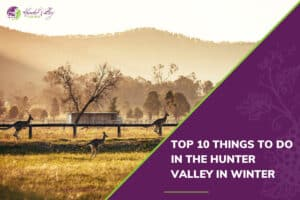 Top 10 things to do in the Hunter Valley in Winter