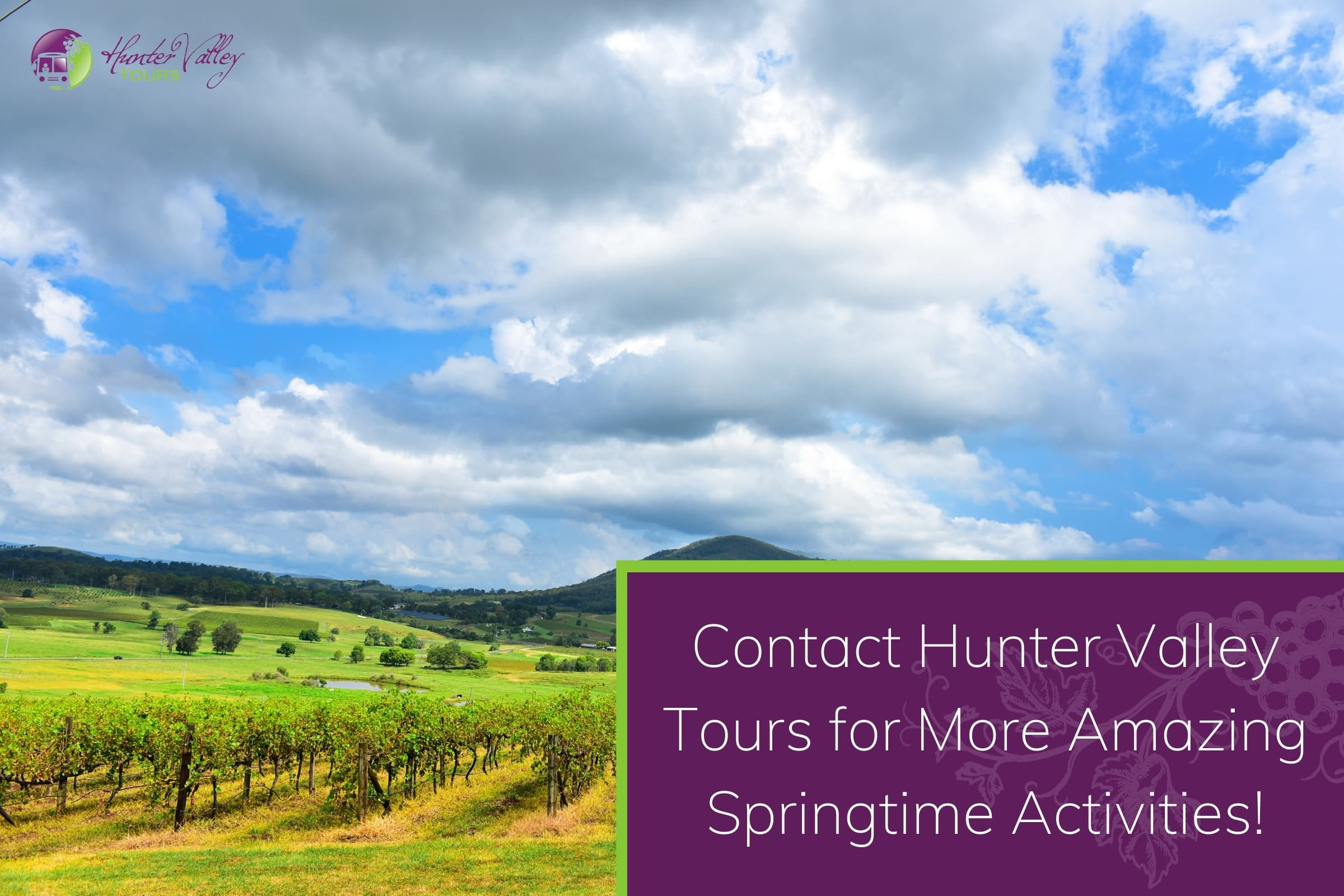 Contact Hunter Valley Tours for More Amazing Springtime Activities!