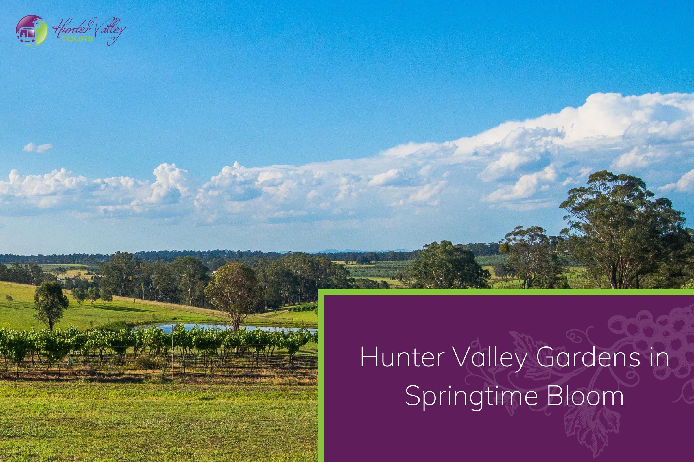Hunter Valley Gardens in Springtime Bloom
