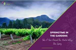 Springtime in the Gardens Hunter Valley Tours